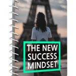 The New Success Mindset