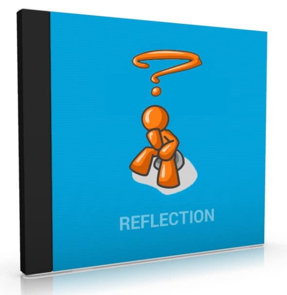 Reflection PLR Bundle